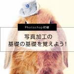 【Photoshop初級】写真加工の基礎の基礎を覚えよう!